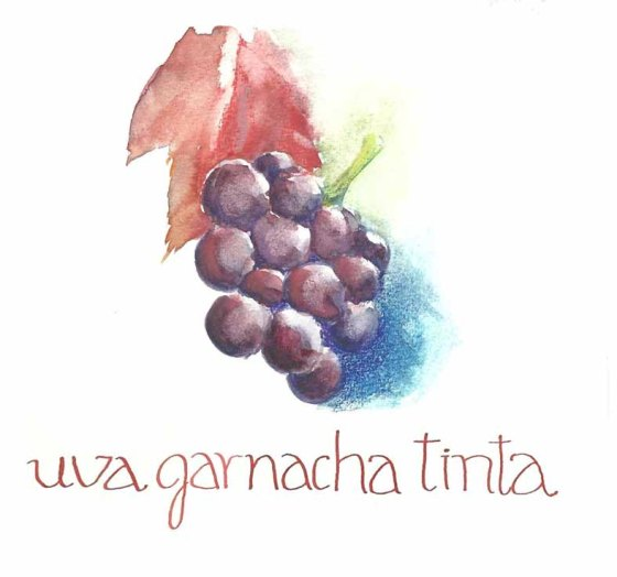 GARNACHA TINTA 001