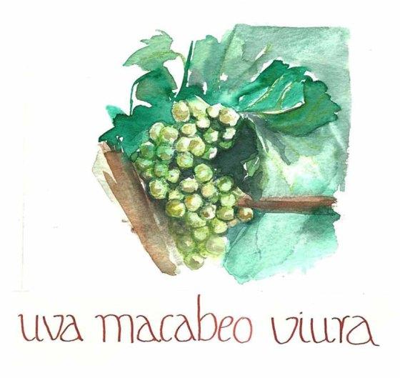 MACABEO VIURA 001